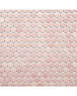 Glossy Penny Round Mosaic