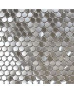 Brushed Steel Penny Round